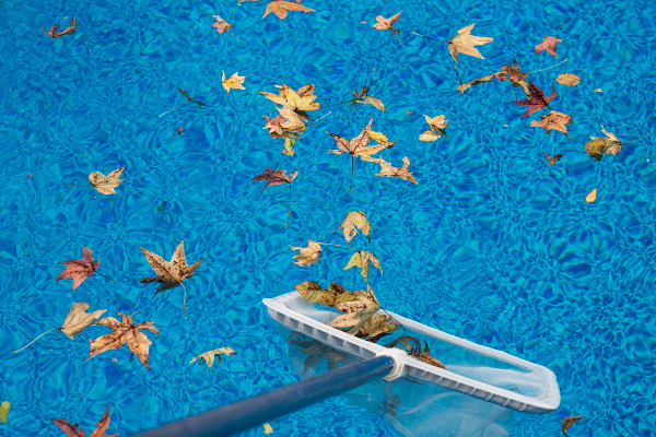 How to Reduce the Need for Pool Chemicals